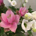 8月26日 「愛に根ざして」 佐藤和宏牧師