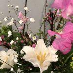 2月24日 「神の風景」 佐藤和宏牧師